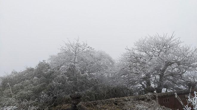 Nhiệt độ xuống dưới 0 độ C, băng giá phủ trắng nhiều nơi trong đợt rét khốc liệt ở miền Bắc - hình ảnh 15