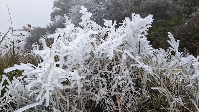 Nhiệt độ xuống dưới 0 độ C, băng giá phủ trắng nhiều nơi trong đợt rét khốc liệt ở miền Bắc - hình ảnh 3