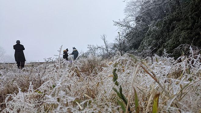 Nhiệt độ xuống dưới 0 độ C, băng giá phủ trắng nhiều nơi trong đợt rét khốc liệt ở miền Bắc - hình ảnh 9
