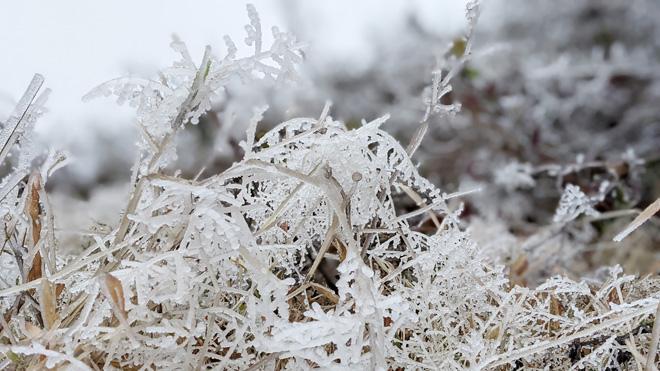 Miền Bắc rét kinh hoàng, những nơi nào có thể xảy ra mưa tuyết? - hình ảnh 1