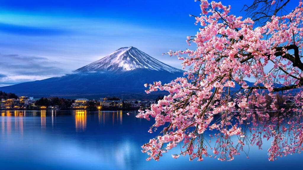 7 địa danh kỳ lạ nhất ở Nhật Bản, du khách đến rồi chỉ muốn quay lại lần nữa - hình ảnh 2