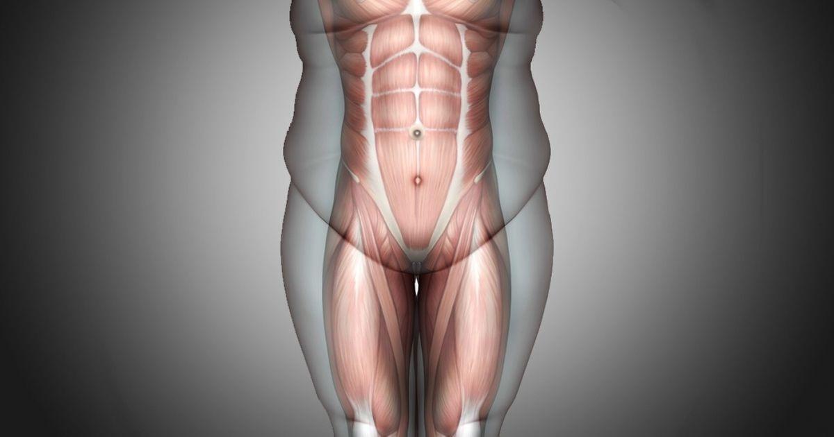 Cơ thể sẽ lập tức thay đổi sau 1 tháng nếu tập động tác này 4 phút mỗi ngày - hình ảnh 1