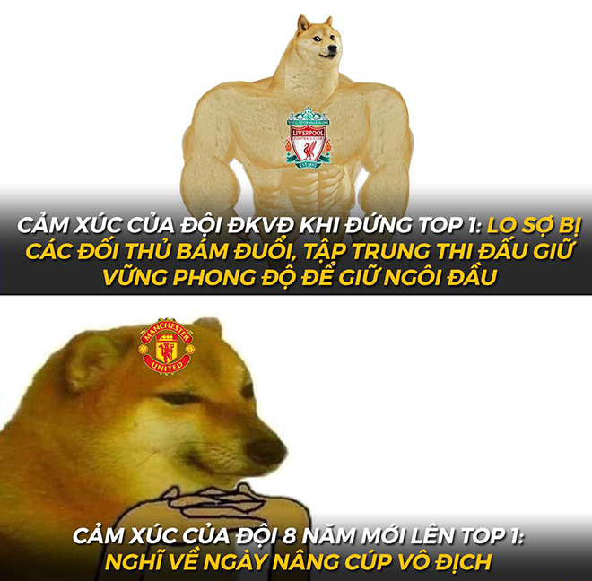 """Ảnh chế: Man Utd """"lên đỉnh"""" ngoại hạng Anh, fan mơ chức vô địch - 3"""