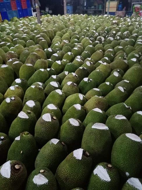 Hàng nghìn quả mít bị cắt đầu, bôi chất trắng trước khi mang bán, mục đích là gì? - 3