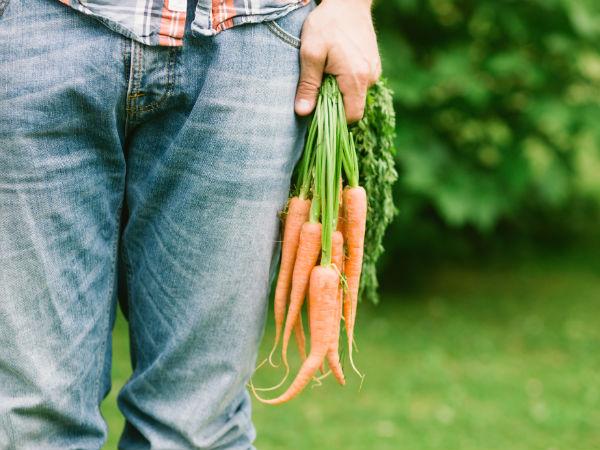 Sức khỏe sinh sản ở nam giới sẽ được cải thiện mạnh mẽ chỉ với một củ cà rốt - hình ảnh 3