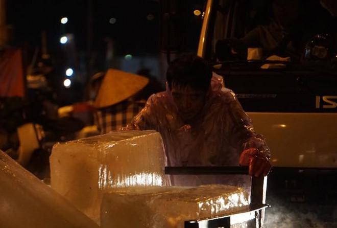 'Đội' rét mưu sinh lúc nửa đêm ở cảng cá lớn nhất miền Trung - 1