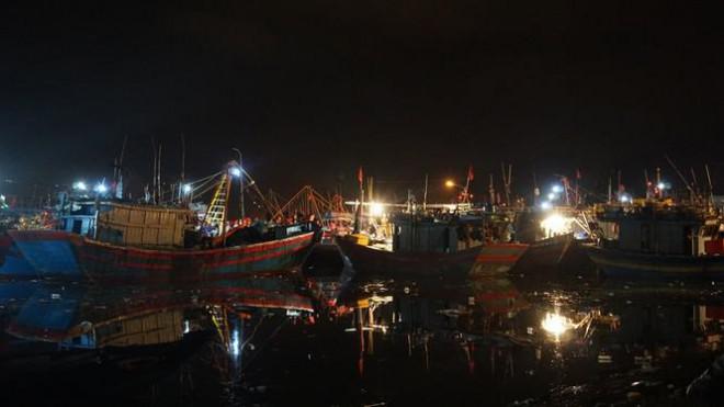'Đội' rét mưu sinh lúc nửa đêm ở cảng cá lớn nhất miền Trung - 2