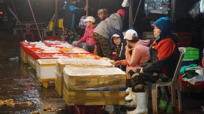 'Đội' rét mưu sinh lúc nửa đêm ở cảng cá lớn nhất miền Trung - 8
