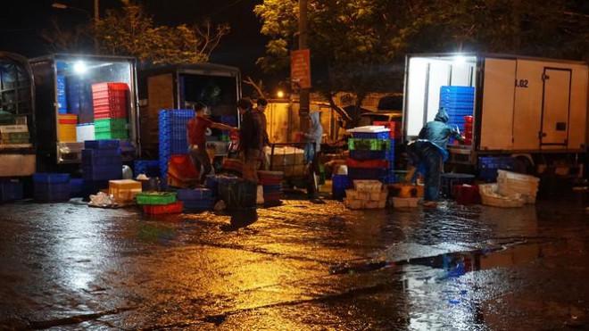 'Đội' rét mưu sinh lúc nửa đêm ở cảng cá lớn nhất miền Trung - 10