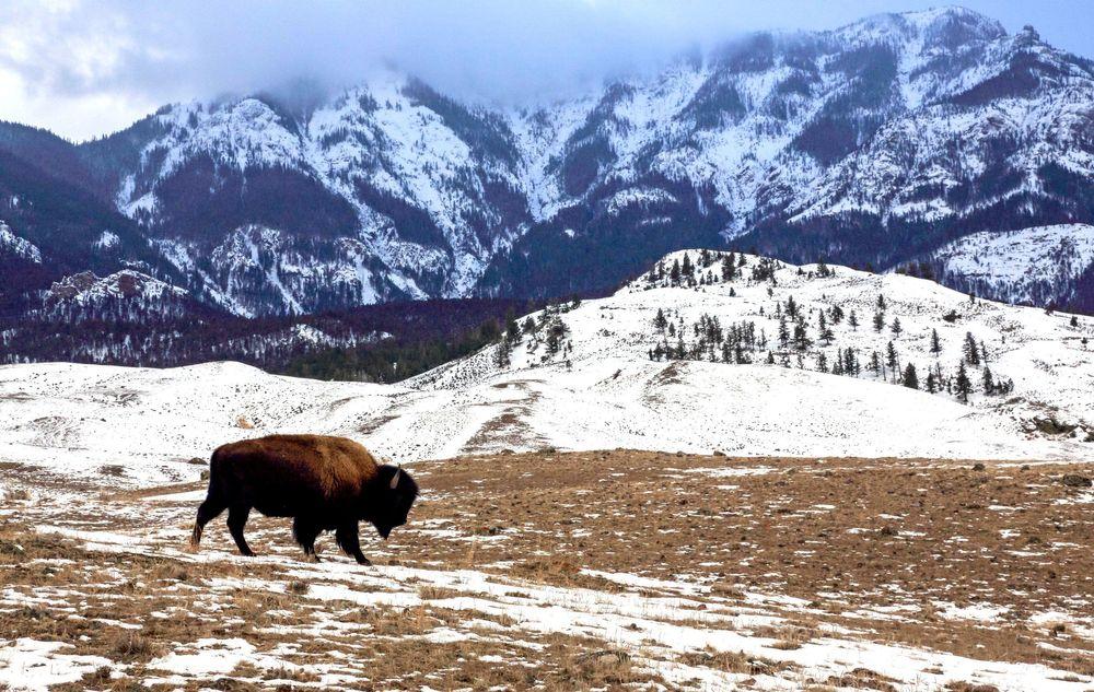 Những phong cảnh mùa đông đẹp nhất thế giới - 28