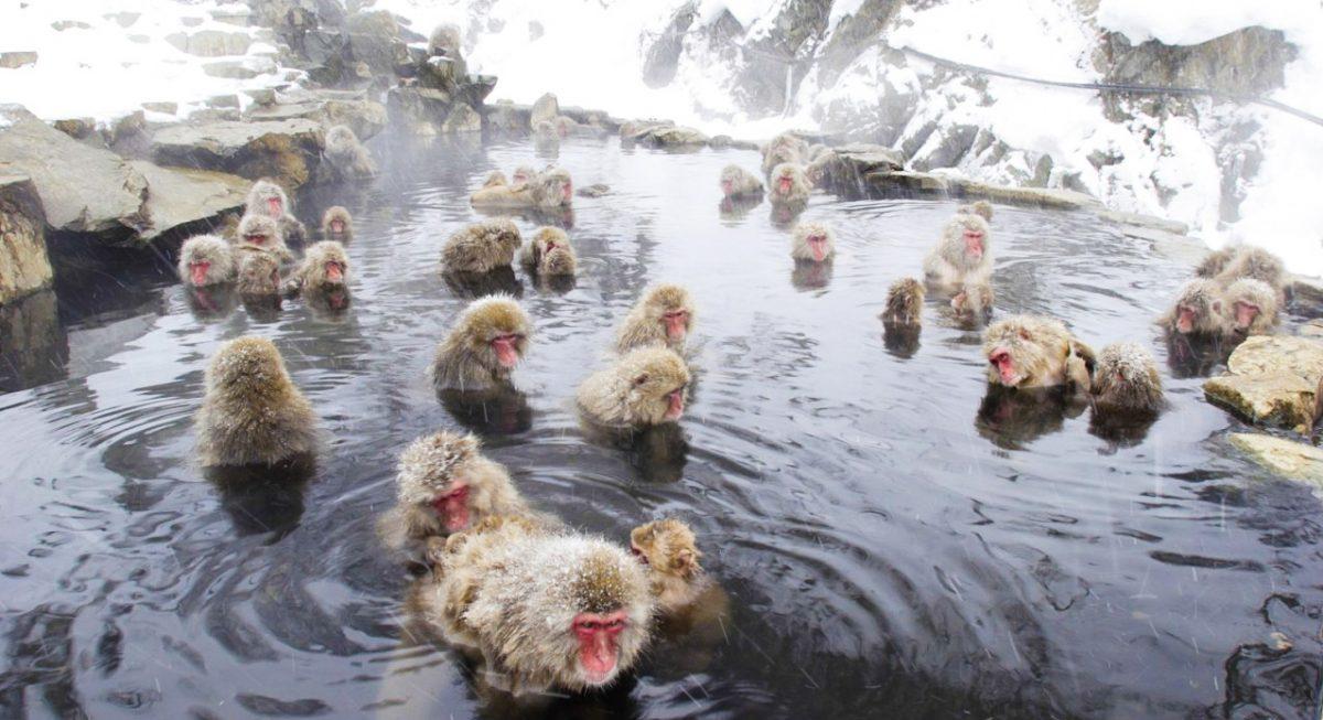 Những phong cảnh mùa đông đẹp nhất thế giới - 8