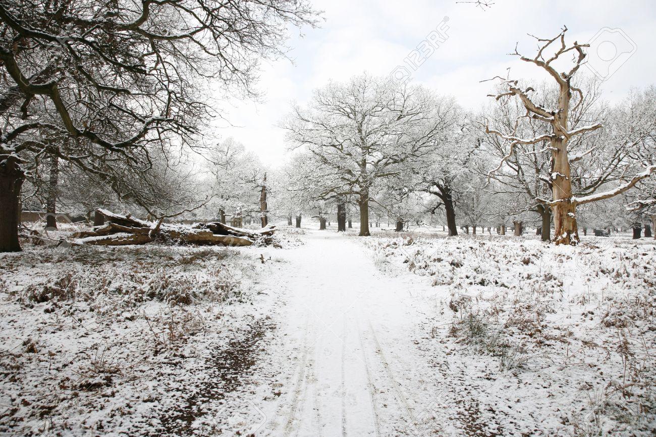 Những phong cảnh mùa đông đẹp nhất thế giới - 14