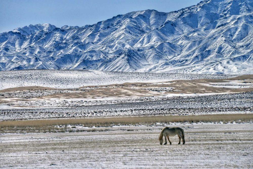 Những phong cảnh mùa đông đẹp nhất thế giới - 16