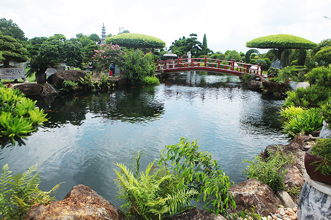 Hồ cá Koi sử dụng nhiều đá bán quýlớn nhất Việt Nam - 1