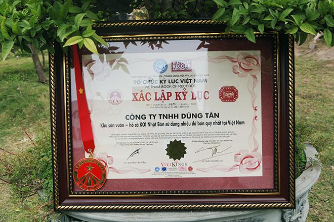 Hồ cá Koi sử dụng nhiều đá bán quýlớn nhất Việt Nam - 2