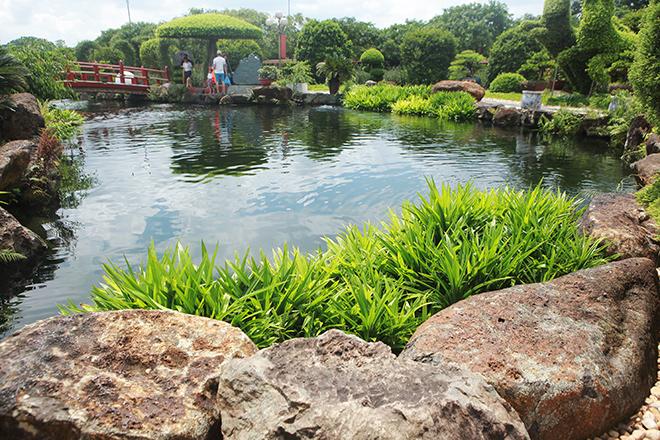 Hồ cá Koi sử dụng nhiều đá bán quýlớn nhất Việt Nam - 3