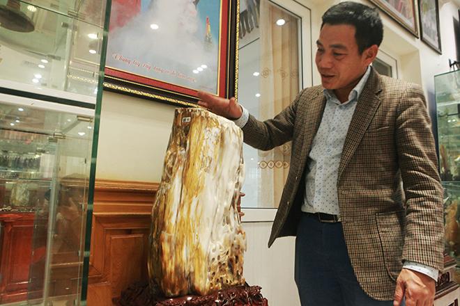 Bộ sưu tập gỗ hóa ngọc độc nhất vô nhị ở Việt Nam - hình ảnh 3