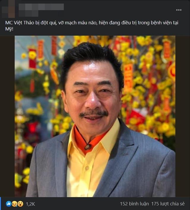 Bà xã MC hải ngoại Việt Thảo phản hồi tin đồn chồng bị đột quỵ, vỡ mạch máu não - 1