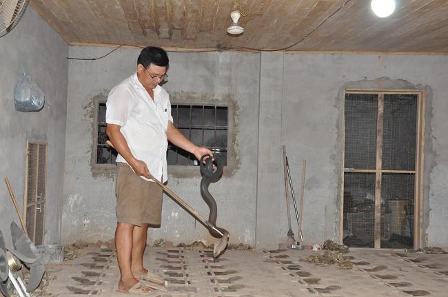 Hàng ngàn con rắn hổ mang bị bỏ đói, thậm chí có nhà bị chết hàng nghìn con rắn do không được cho ăn.