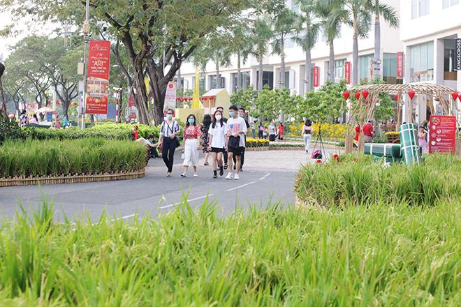 """Ngắm đường hoa dài 700m ở Phú Mỹ Hưng, điểm """"check in"""" cho du khách dịp Tết đến Xuân về - hình ảnh 4"""