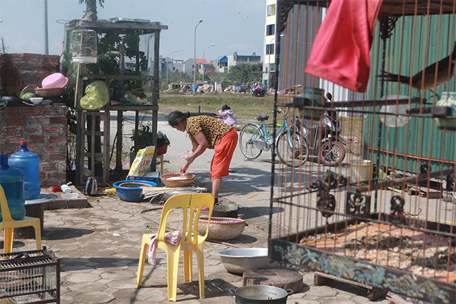 Gia đình 14 con ở Hà Nội: Tết đói khổ hơn vì biến cố lớn - hình ảnh 2