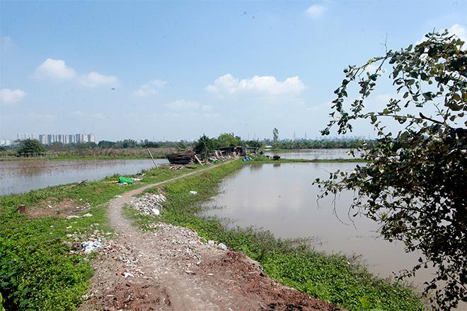 Gia đình 14 con ở Hà Nội: Tết đói khổ hơn vì biến cố lớn - hình ảnh 8