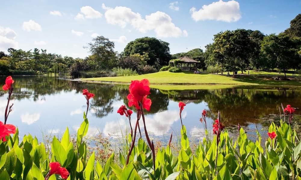 Mùa xuân châu Á cũng khiến du khách say lòng người bởi những cảnh đẹp này - 10