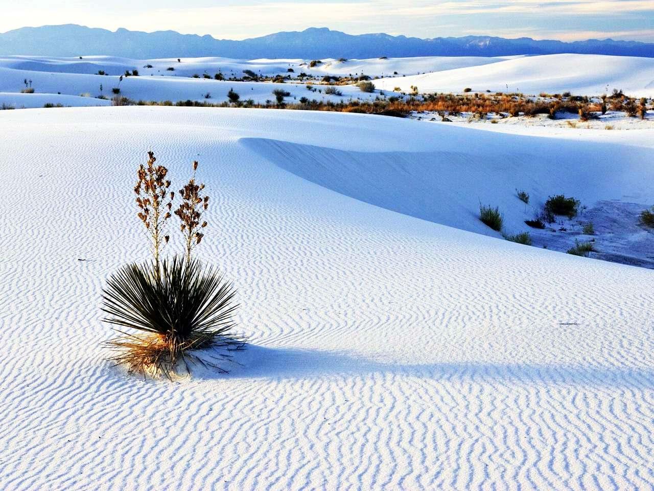 Những sa mạc kỳ quái nhất hành tinh khiến cả những du khách giàu kinh nghiệm nhất phải kinh ngạc - 9