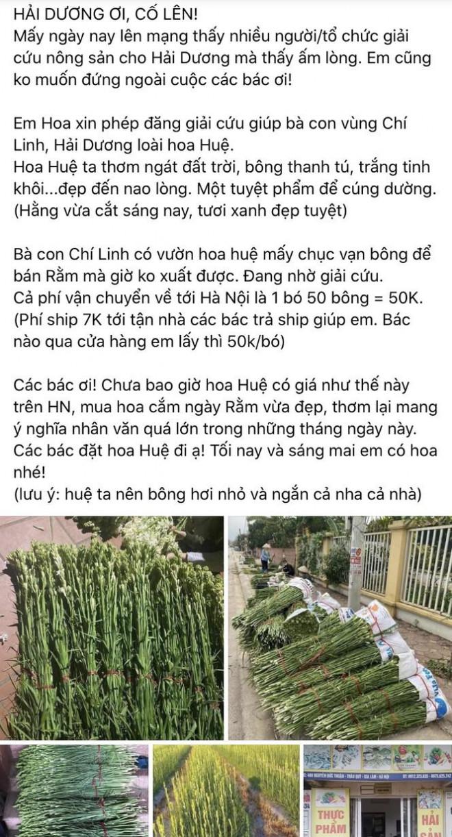Sát Rằm tháng Giêng, giá hoa ở Hà Nội thấp lạ thường - 5
