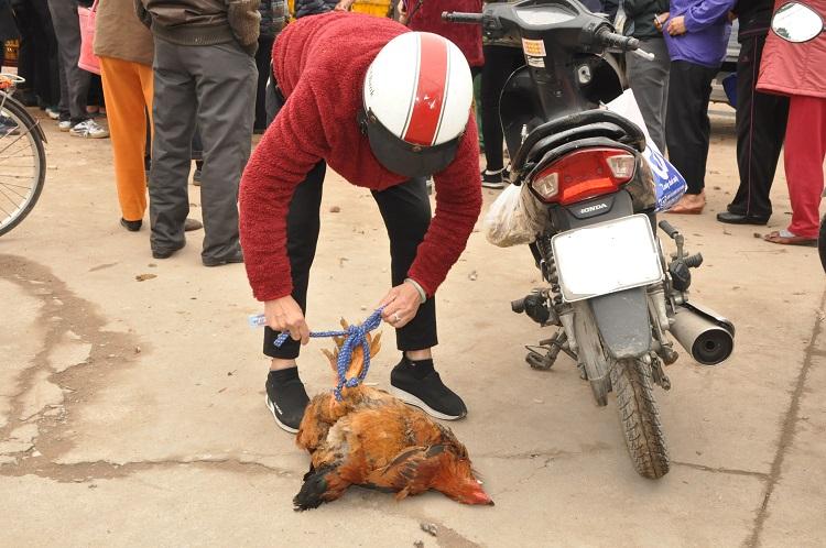Gà đồi Chí Linh giá chỉ 55.000 đồng/kg, hàng trăm người Hà Nội xếp hàng mua giải cứu - 7