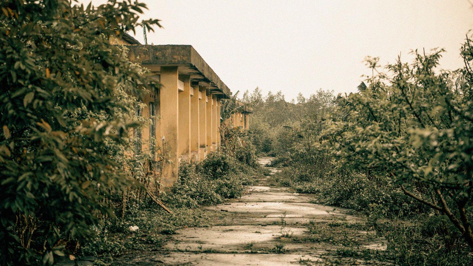 Người phụ nữ khốn khổ sống cô độc trong khu nhà bỏ hoang giữa rừng - 4
