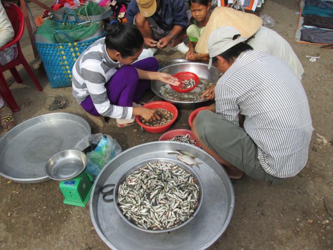 Bất ngờ 6 món ăn, thức uống của Đồng Tháp lọt vào top 100 đặc sản Việt Nam - 3