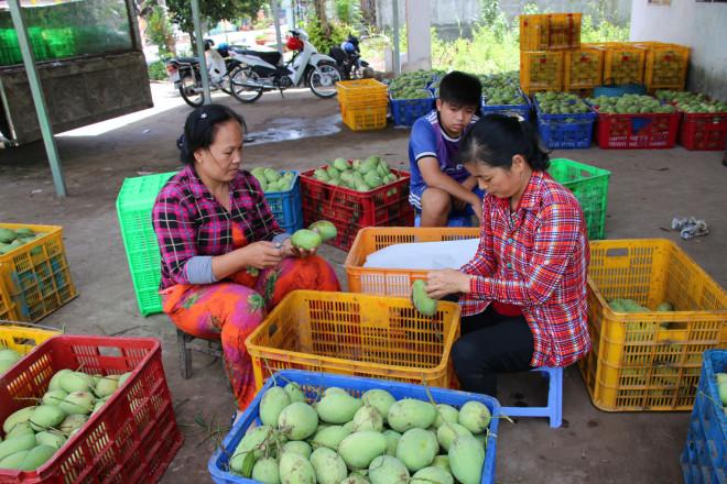 Bất ngờ 6 món ăn, thức uống của Đồng Tháp lọt vào top 100 đặc sản Việt Nam - 10