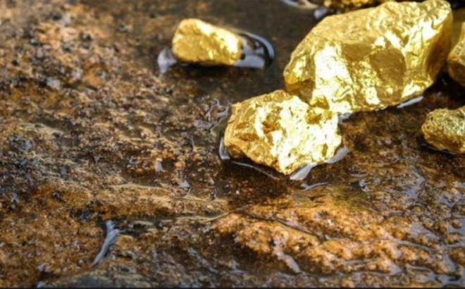 Dắt chó đi dạo, cô bé 4 tuổi nhặt được khối vàng khổng lồ tiền tỷ - 1