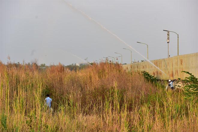 Lửa lan rộng hàng chục ha trong Khu Công nghệ cao TP.HCM - hình ảnh 8