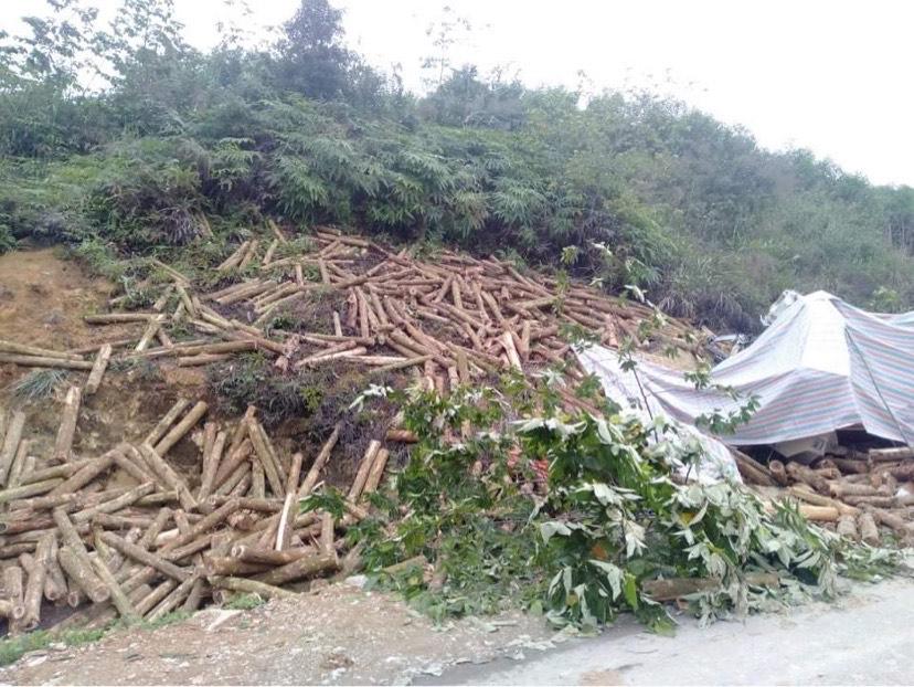 7 người thiệt mạng trong vụ tai nạn thảm khốc ở Thanh Hóa đều ngồi trên cabin xe tải - hình ảnh 1