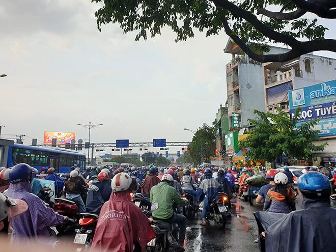 """""""Mưa vàng"""" đổ xuống Sài Gòn sau chuỗi ngày nắng như đổ lửa - 2"""