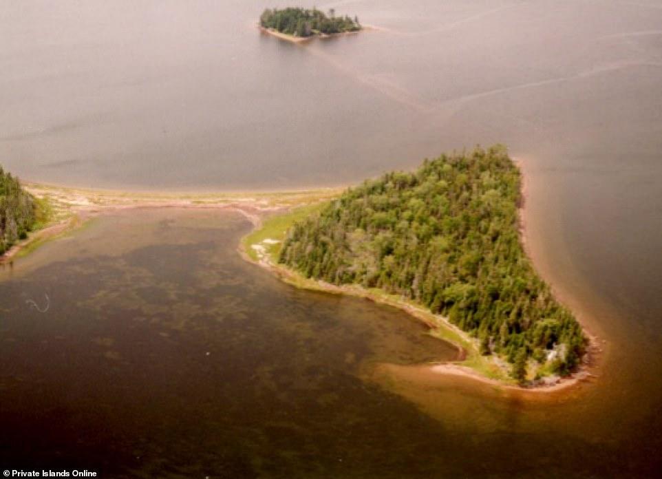 Những hòn đảo tư nhân tuyệt đẹp có giá bán rẻ bằng nửa căn hộ - hình ảnh 5