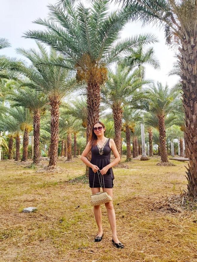 Ngất ngây với vẻ đẹp của vườn chà là ở Sa Đéc - 6