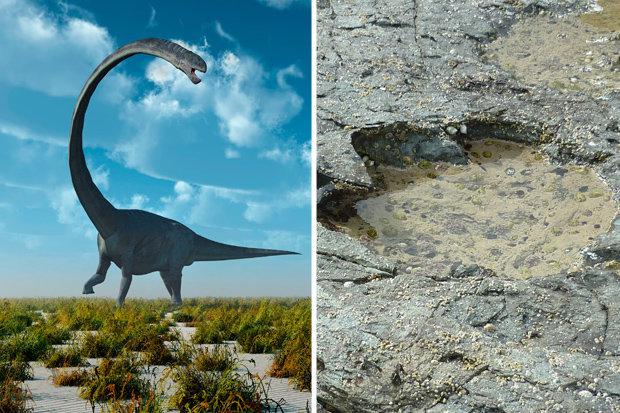 Phát hiện dấu vết khủng long quái vật tồn tại cách 170 triệu năm