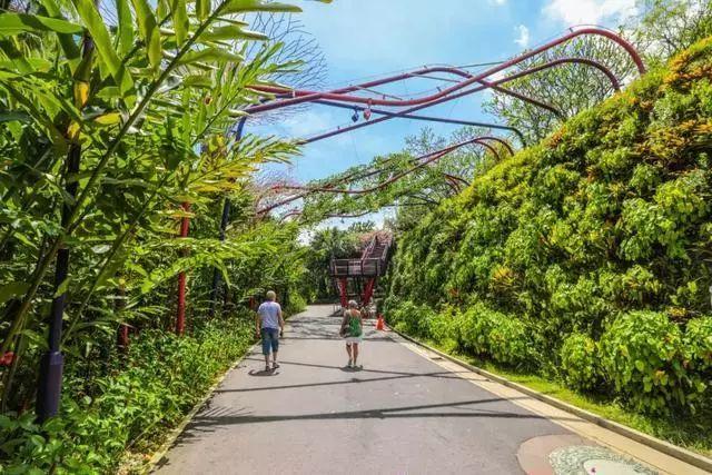Sạch đẹp thôi chưa đủ, Singapore còn chi hàng nghìn tỷ đồng xây dựng vườn nguyên sinh khổng lồ tuyệt đẹp - hình ảnh 1