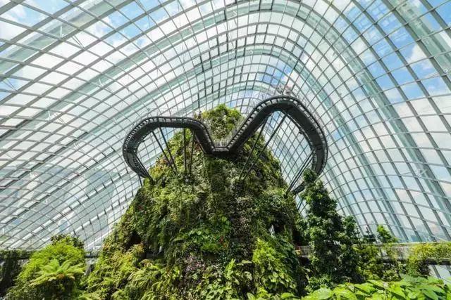 Sạch đẹp thôi chưa đủ, Singapore còn chi hàng nghìn tỷ đồng xây dựng vườn nguyên sinh khổng lồ tuyệt đẹp - hình ảnh 10
