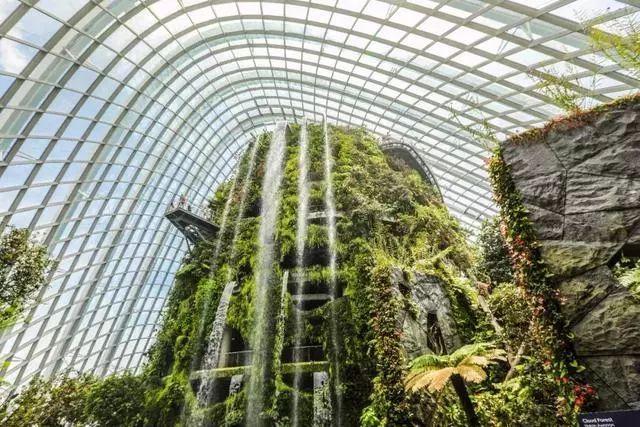 Sạch đẹp thôi chưa đủ, Singapore còn chi hàng nghìn tỷ đồng xây dựng vườn nguyên sinh khổng lồ tuyệt đẹp - hình ảnh 8
