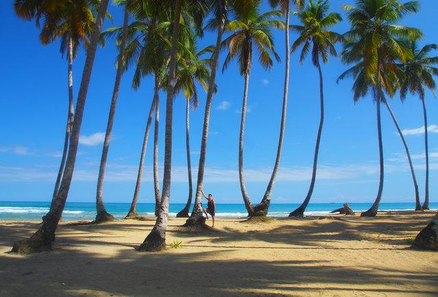 Lạc lối trước những bãi biển đẹp như thiên đường ở vùng Caribe - hình ảnh 8