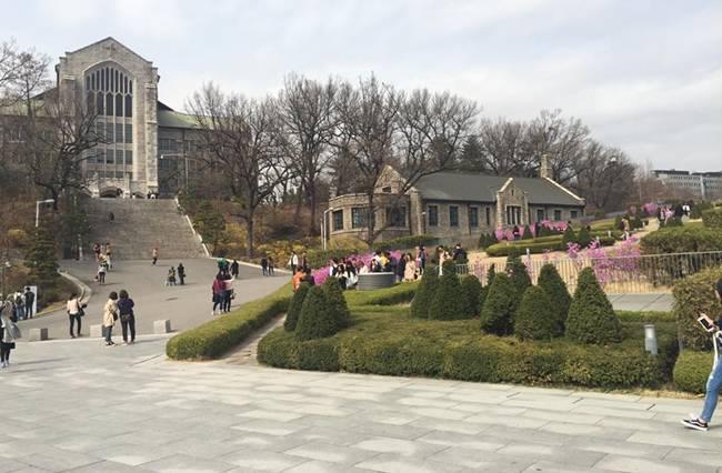Kinh nghiệm 5 ngày ăn chơi 'thả ga' ở Hàn Quốc, tha hồ sống ảo với loạt ảnh siêu đẹp - hình ảnh 15