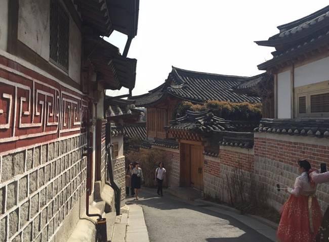 Kinh nghiệm 5 ngày ăn chơi 'thả ga' ở Hàn Quốc, tha hồ sống ảo với loạt ảnh siêu đẹp - hình ảnh 12