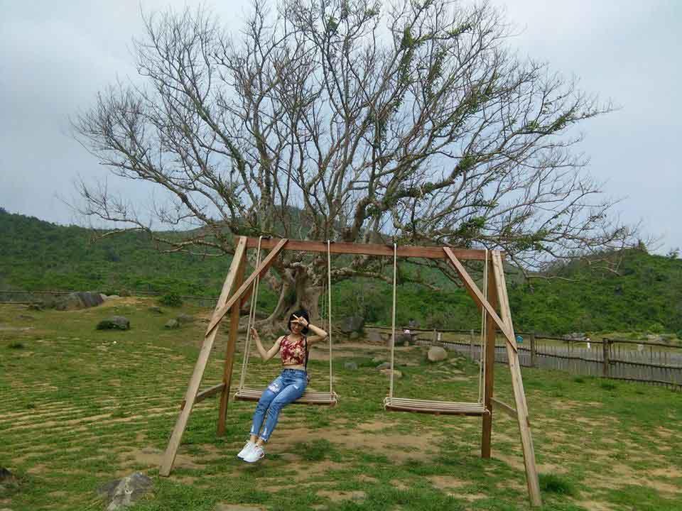 """Giới trẻ đứng ngồi không yên với trang trại """"sống ảo"""" nhất Phú Yên - hình ảnh 13"""