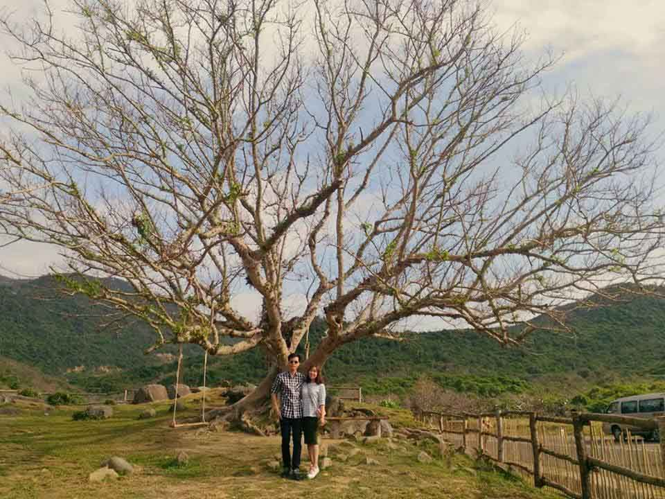 """Giới trẻ đứng ngồi không yên với trang trại """"sống ảo"""" nhất Phú Yên - hình ảnh 4"""