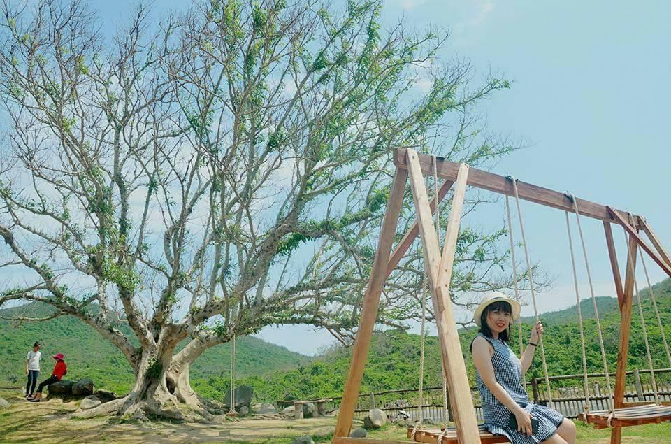 """Giới trẻ đứng ngồi không yên với trang trại """"sống ảo"""" nhất Phú Yên - hình ảnh 5"""