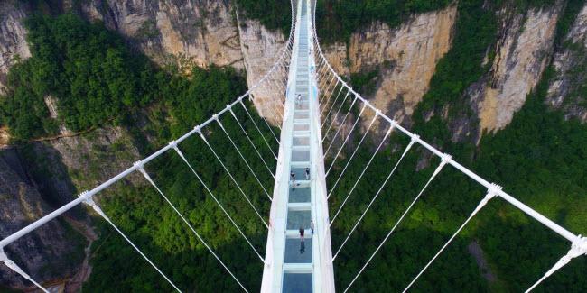 Cầu khỉ Việt Nam nằm trong top 15 cây cầu đáng sợ nhất thế giới - hình ảnh 3